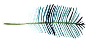 Grafik-Kokonuss-Palme-Blatt